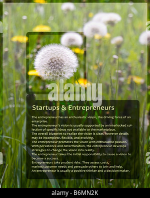 Sample Information Sheet for Entrepreneurs With Dandelion Black Trim - Stock Photo