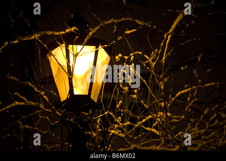 A street lamp among snowy branches in Augsburg, Germany. - Stock Photo