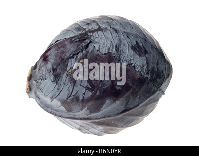 fresh red cabbage isolated on a white background - Stock Photo