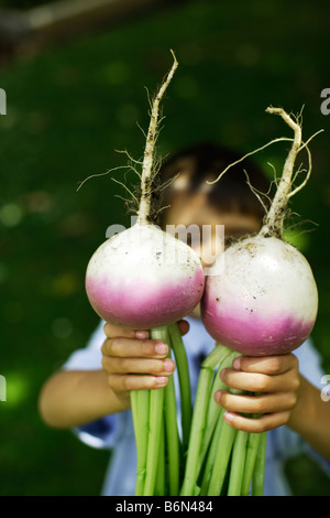 Six year old boy holds two organic home grown turnips - Stock Photo