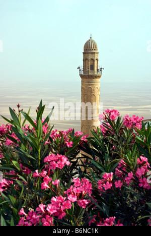 Mardin's Ulu Camii, Great Mosque, Minaret overlooking plain leading south to Syria - Stock Photo