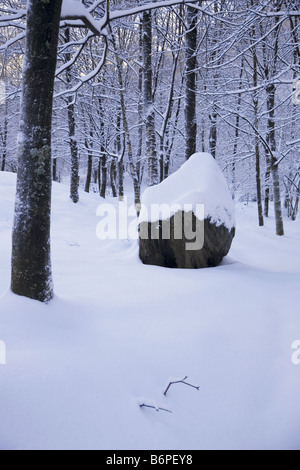 The Day After Christmas with fresh snow on the ground and on the rock by our drive that looks like icing on a cake! - Stock Photo
