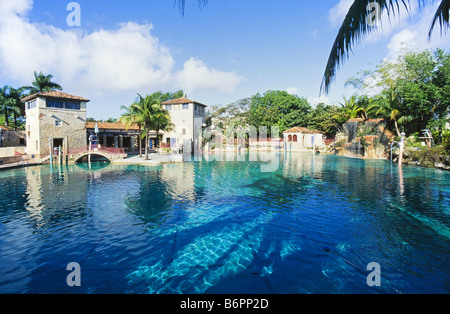 Venetion Pool, public swimming pool, Coral Gables, - Stock Photo