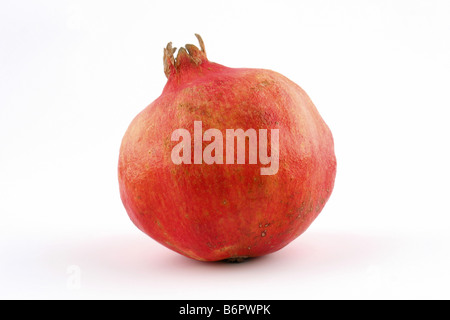 fresh pomegranate on white background - Stock Photo