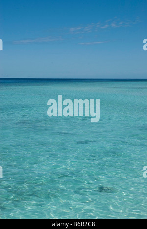Clear shallow turquoise coloured water over a coral reef, and blue sky, in the Maldives. - Stock Photo