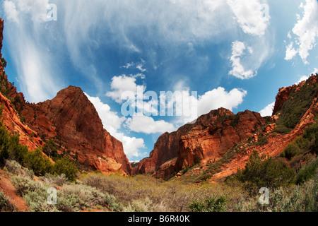 Kolob Canyon fisheye