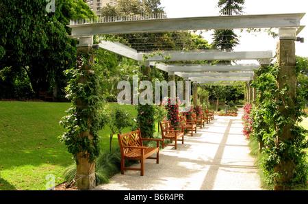 Rose Garden Arbor in the Sydney Botantic Gardens - Stock Photo