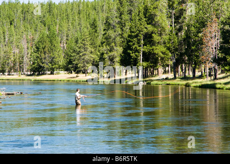 Wy yellowstone national park fly fishing in the for Madison river fly fishing