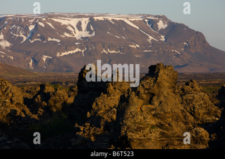 Gyrfalcon Falco rusticolus pearched on lava in Dimmuborgir Iceland - Stock Photo