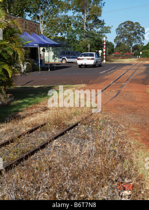 sugar cane railway - Stock Photo
