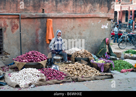 INDIA JAIPUR RAJASTHAN Colorful vegetables being sold by a young boy in jeans and an older woman in a sari - Stock Photo