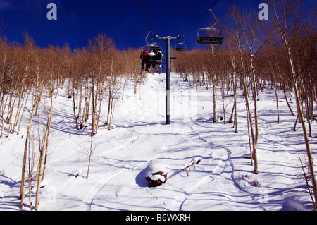 USA, Colorado, Vail Ski Resort. Skiers being carried through a grove of apsen trees on a chair lift in Vail back - Stock Photo