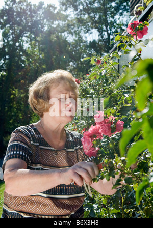 Woman by pink flowers - Stock Photo