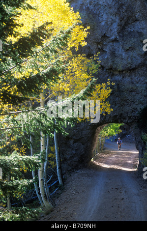 A young woman pedals her mountain bike through a rock tunnel surrounded by golden aspen leaves in the San Francisco - Stock Photo