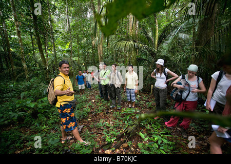 Suriname, Kwamalasamutu, Tourists and local Trio Indian guide making walking tour in forest. - Stock Photo