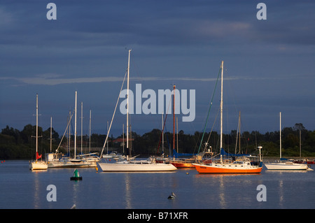 Early Light on Yachts and Dark Gray Clouds Hastings River Port Macquarie New South Wales Australia - Stock Photo