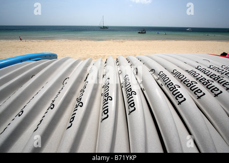 A ROW OF WHITE CANOES LINED UP ON A BEACH QUEENSLAND AUSTRALIA HORIZONTAL BDB11365 - Stock Photo