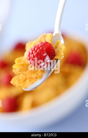 Spoon with milk corn flakes and raspberry cereal bowl in background - Stock Photo