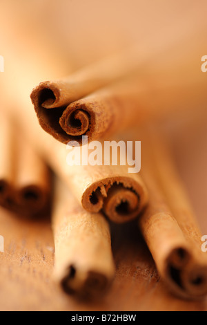 Cinnamon sticks selective focus - Stock Photo