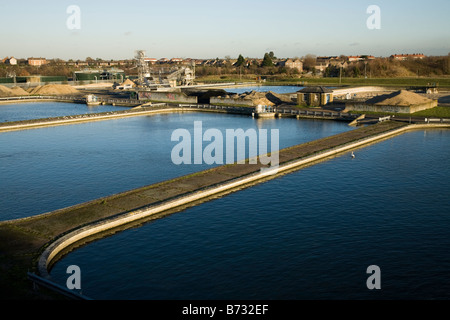 Filter beds at Thames Water treatment works at Kempton, Middlesex. UK. (44) - Stock Photo