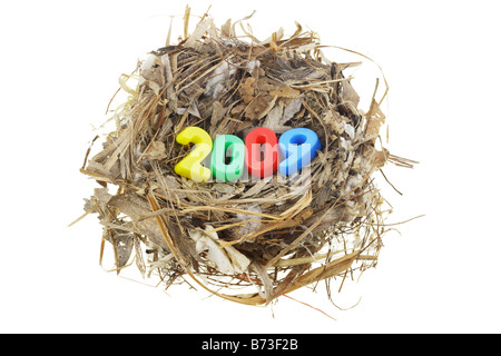 Plastic number blocks in bird nest signifying the beginning of year 2009 - Stock Photo
