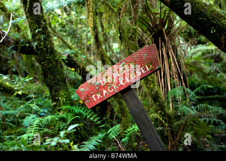 New Zealand, South Island, Fox Glacier, Chalet lookout track. Rainforest. Sign saying Danger Track Closed. - Stock Photo