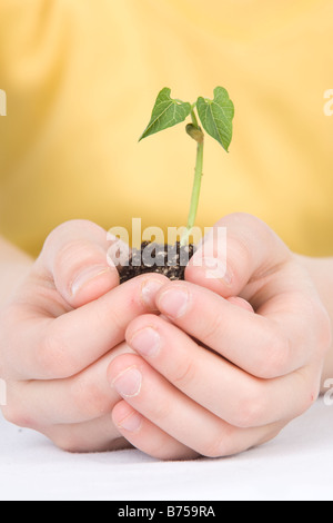 9 year old girl with the small plant in her hands, Winnipeg, Manitoba - Stock Photo