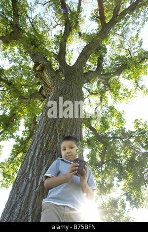 Low angle view, six year old boy holding small tree beside large tree, Winnipeg, Canada - Stock Photo