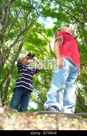Four and six year old brothers look upward, on walking trail in forest, Winnipeg, Canada - Stock Photo