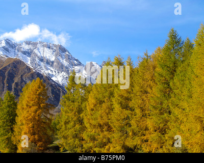 Samnaun, Berglandschaft im Herbst, mountain landscape in the autumn - Stock Photo