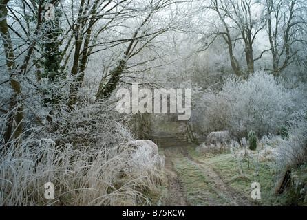 Country lane in winter with hoar frost Chapel Lawn Shropshire England - Stock Photo