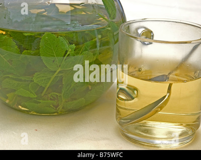 hot mint tea in glass beneath glass pot with peppermint tea fresh green leaves of mint swimming im hot water - Stock Photo