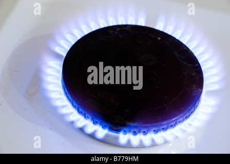 Batural blue flames of gas cooker in house kitchen - Stock Photo