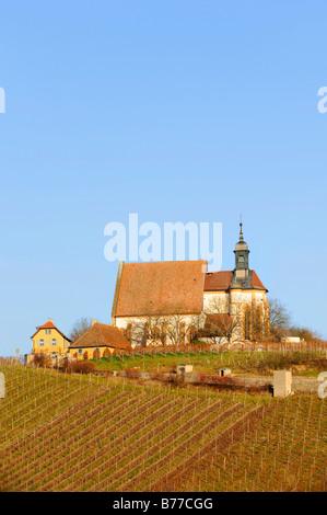 Maria am Weingarten pilgrimage church, Volkach an der Mainschleife, Lower Franconia, Bavaria, Germany, Europe - Stock Photo