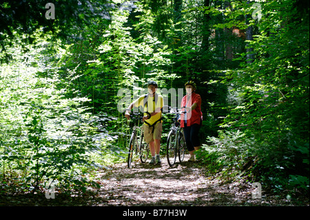 Cyclists in the wildlife park, Paterzeller Eibenwald, yew tree forest near Wessobrunn, Upper Bavaria, Bavaria, Germany, - Stock Photo