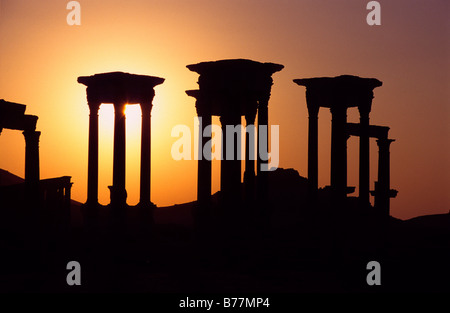 Columns of the desert town Palmyra in the sunset, Syria, Middle East, Orient - Stock Photo