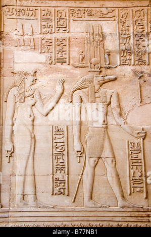 Relief of the crocodile god Sobek, Kom Ombo, Egypt, Africa - Stock Photo