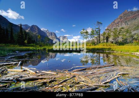 Driftwood on Lake Saint Mary, Glacier National Park, Montana, USA, North America - Stock Photo