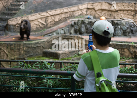 young Japanese boy taking picture of bear at Tokyo zoo using his cell phone - Stock Photo