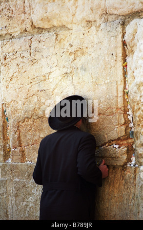 A Jewish religious man kisses the wailing wall ( western wall ). The holiest site in the Jewish religion. - Stock Photo