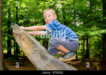 6-year-old boy climbing a tree trunk - Stock Photo
