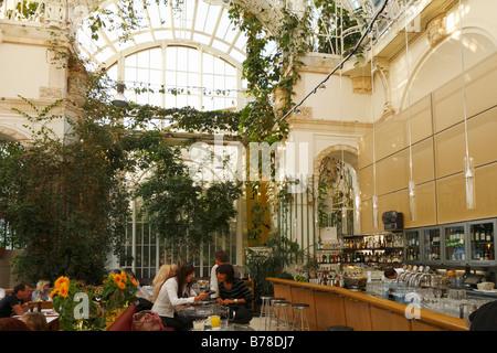 Café Palmenhaus in the Burggarten, Vienna, Austria, Europe - Stock Photo