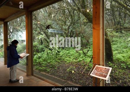 Information centre Laguna Grande in a cloud forest, Garajonay National Park, La Gomera, Canary Islands, Spain, Europe