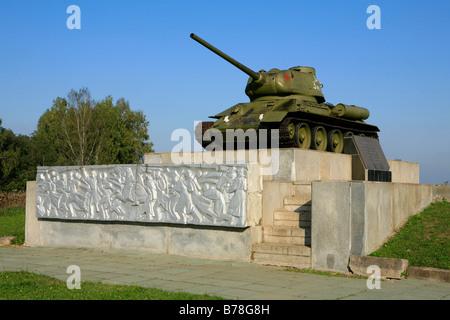 World War II Memorial marking the spot of heavy fighting in October 1941 in Borodino, Russia - Stock Photo