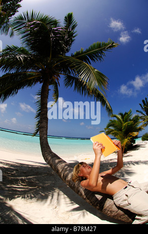 Young boy reading on a palm tree trunk in Kurumba Resort, The Maldives, Indian Ocean - Stock Photo