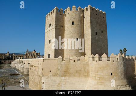 Torre de la Calahorra Tower, Cordoba, Andalusia, Spain, Europe - Stock Photo