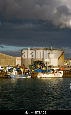 Fishing Boats at the Quayside on the River Adur Shoreham West Sussex fleet - Stock Photo