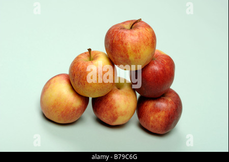 Six Royal Gala apples - Stock Photo