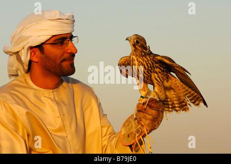Hunting falcon perched on the hand of the falconer, Falcon training in Dubai, United Arab Emirates, UAE - Stock Photo