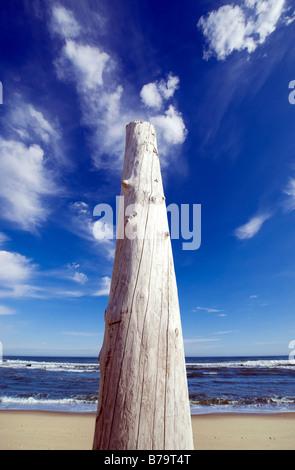 Head of Meadow Beach Truro Cape Cod MA - Stock Photo